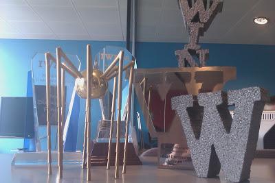www.aerarann.com finalist at 2008 Golden Spider Awards